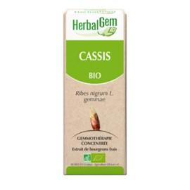 Herbalgem - Cassis Bourgeons Macérats-Mères Concentrés Bio - 30 ml