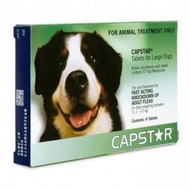 Capstar - 57 mg CHIEN Plus de 11 kg - 6 comprimés