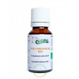 Cailleau Herboristerie - Framboisier gemmothérapie BIO - 15 ml