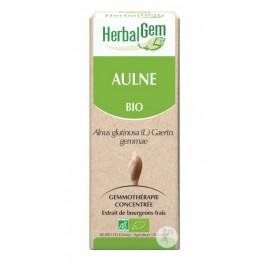 Herbalgem - Aulne Bourgeons Macérats-Mères Concentrés Bio - 30 ml